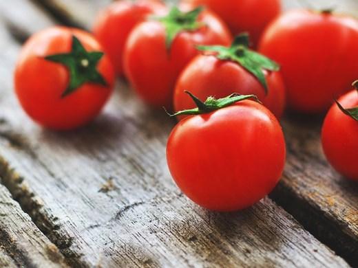 Рекорд! Британец набра 839 чери доматчета от един корен