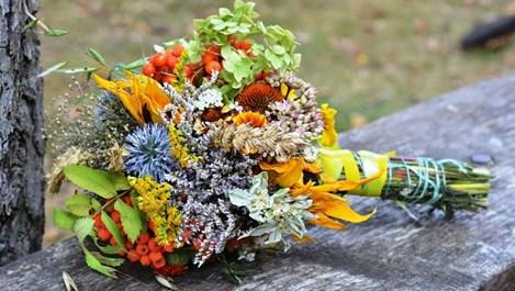 Отслабнете здравословно с тези билки