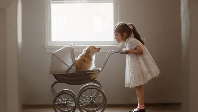 Красивото приятелство между дете и куче (Галерия)