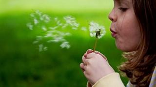 Как да разпознаем алергиите?