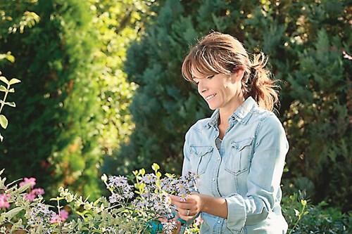 Градинарство за здраве