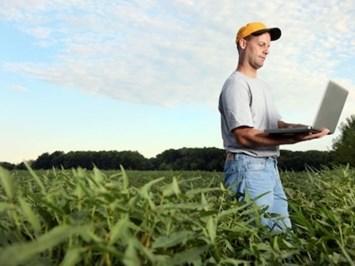 Договорите до 120 дни за прибиране на реколтата вече се заявяват онлайн