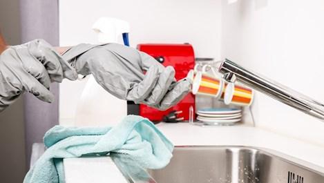 Котешка тоалетна в хладилника и сол в пералнята - 13 нестандартни домакински съвета
