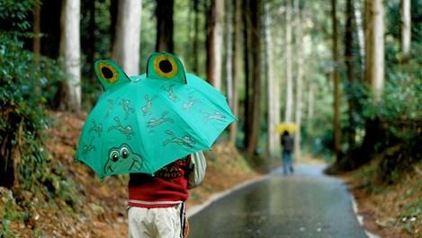 Уикенд, деца и лошо време, или как да натрием носа на скуката