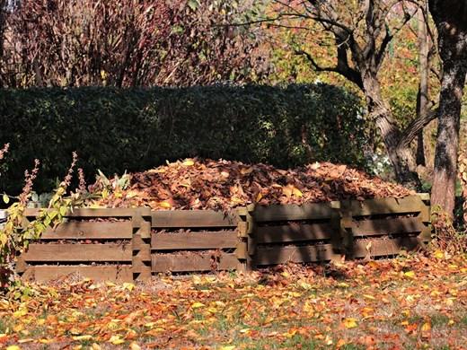 Подгответе градината за есента, като от падналите листа и клони направите компост