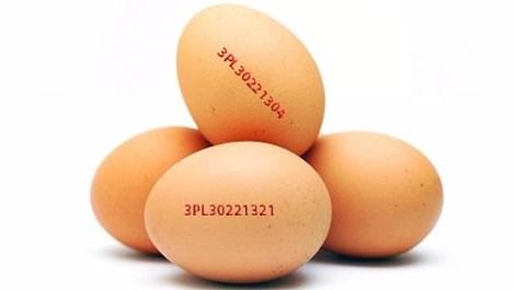 Как да проверим дали сме купили от яйцата със съмнение за салмонела