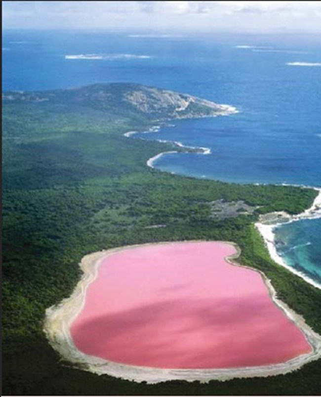 Розовото езеро Хилиър е на остров Мидъл - най-големия от архипелага Решерш до бреговете на Западна Австралия. Причината за цвета му не е напълно ясна. Розово езеро има и в Сенегал, казва се Ретба.