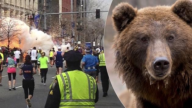 Медузи и мечки нападат маратонци