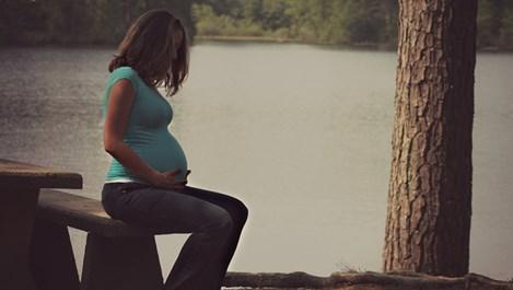 Вирусът Зика е най-опасен за бременните