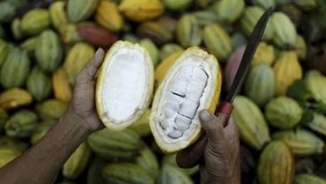Виетнамският шоколад е от най-вкусните