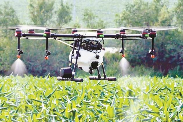 Височината на полета на пръскащите дронове е до 15 м