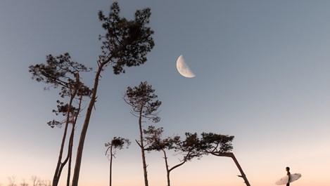 Луна в Скорпион - не приемайте лично случващото се