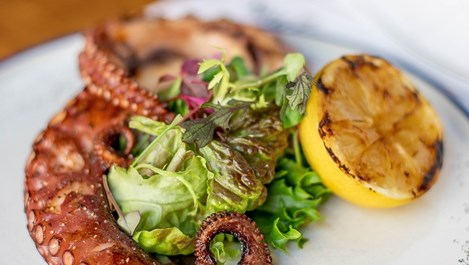 Как да сготвим перфектния октопод (рецепта за 15 минути)