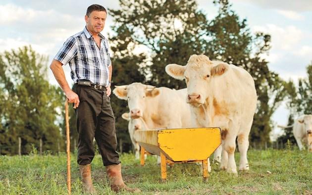Още по-тревожен е фактът, че млекопроизводителите не обсъждат с ветеринарния лекар какво имат в шкафа за лекарства