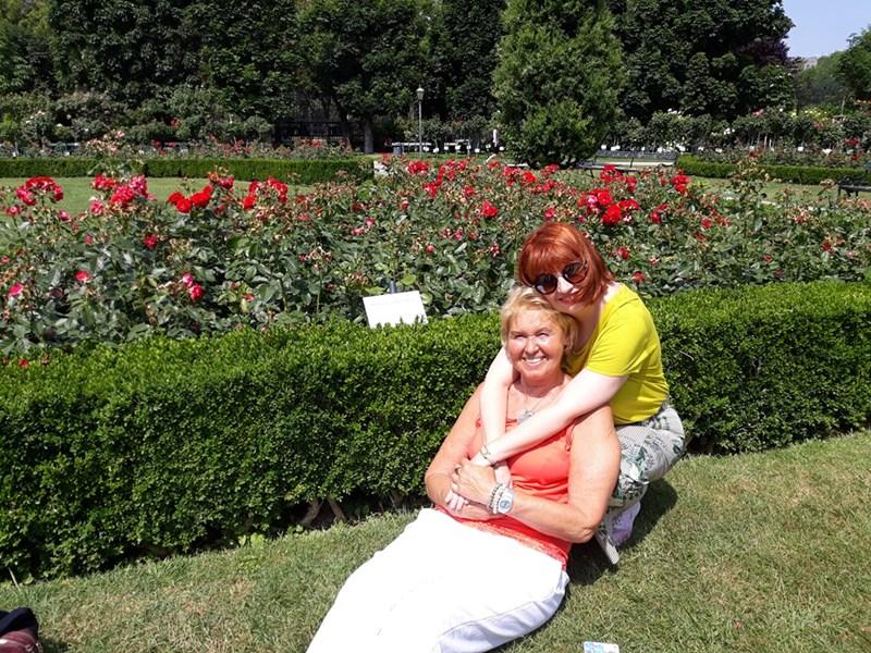 До розовия храст във Фолксгартен, който българските пациенти, спасени от австрийски лекари, осиновили и подарили на медиците