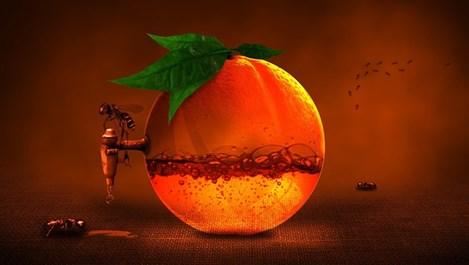 5-те най-важни витамина за есента