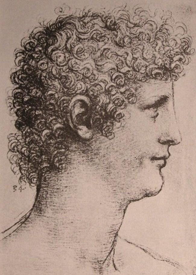 Джан Джакомо Капроти да Орено се конкурира за обичта на художника с безупречния Франческо, който е до учителя си до сетния му дъх
