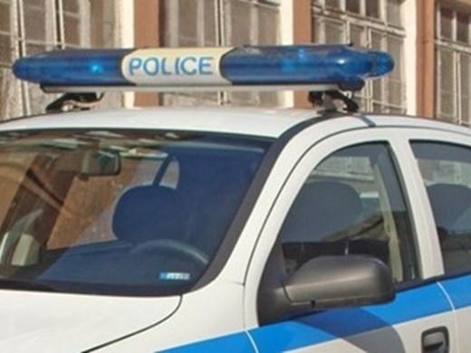 Домашно куче нахапа 11-годишно дете в Спахиево
