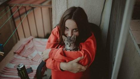 """Какво означава """"лов на котенца"""" на езика на онлайн запознанствата?"""