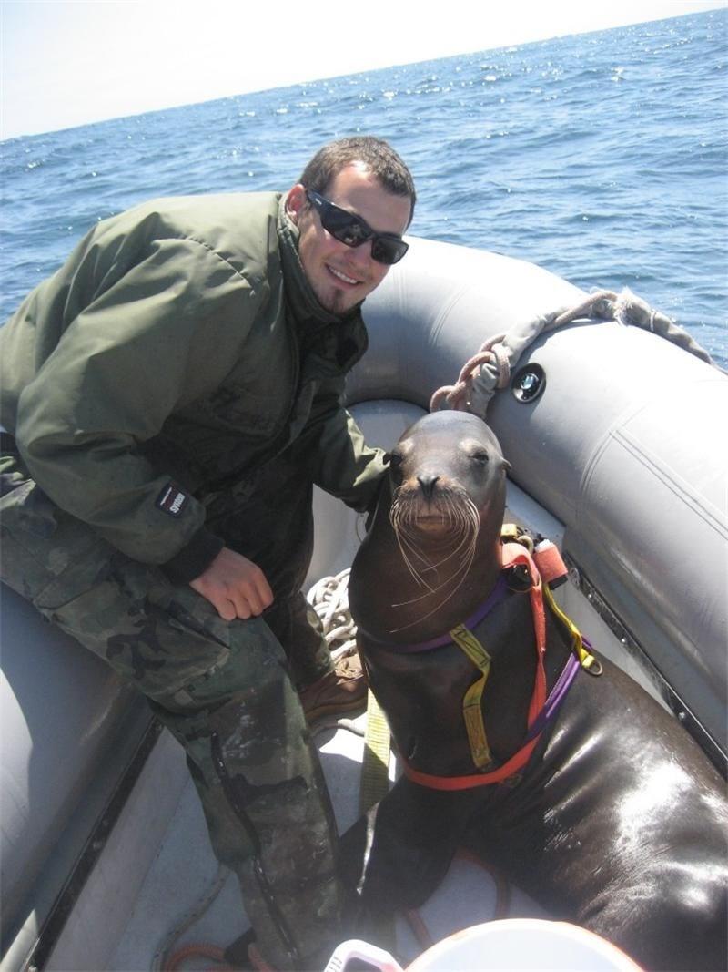 Кол Пърски на тренировка с боен тюлен