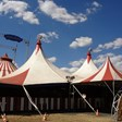 Коронавирусът блокира германски цирк в Нидерландия