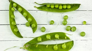 7-те лица на есента, 7-те рецепти за добро настроение