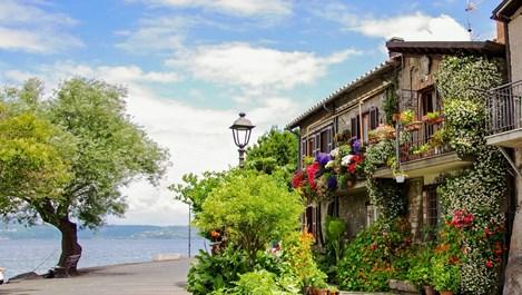 Капризите на балконските цветя