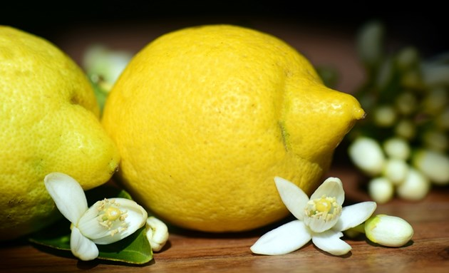 Лимон срещу миризмите в хладилника