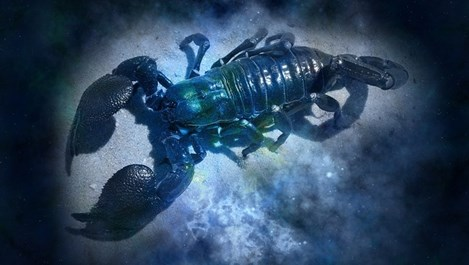 Скорпион - хороскоп 2017-а