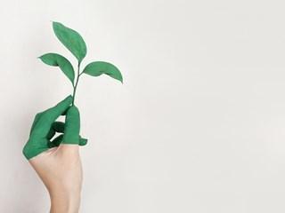 Пълнолуние в Телец – трансформирайте всичко, което притежавате