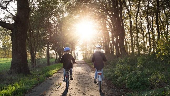 Защо трябва да се научим да караме колело?