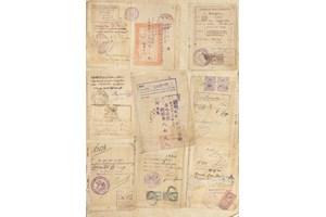 Страници от паспорта на Люба