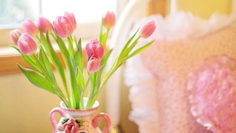 Цветя, подходящи за спалнята