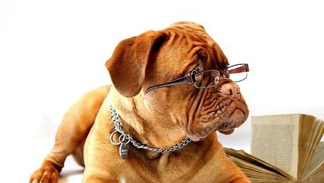 Хитрини за добро зрение