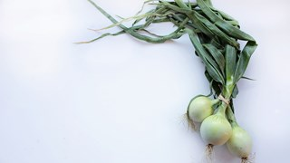 Този витамин пази костите и черния дроб