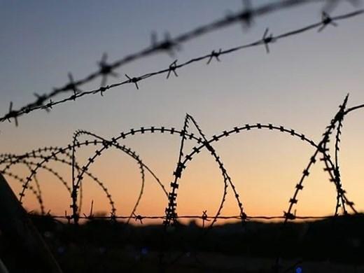 Мъртва мигрантка и 3 малки деца открити на границата между Полша и Беларус