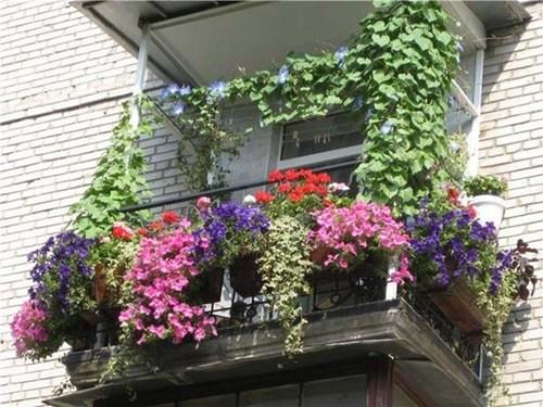 Каскади от цветя