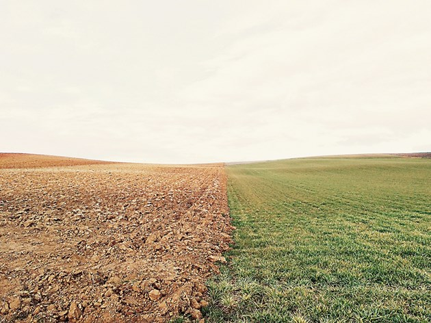 Обработката на почвата трябва да е съобразена с климатичните условия за периода